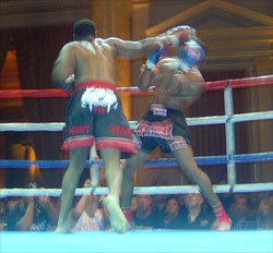 Will Hamilton won US Muay Thai Super Light Heavyweight Title with one punch knockout of Steven Richards.
